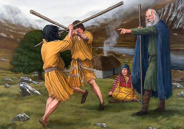 Ирландские галлогасы тренируются бою